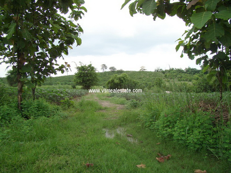 Land for sale, Doihang road, Doihang, Muang, Chiangrai